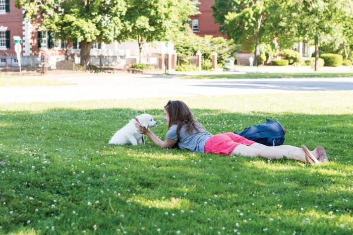 100 cose da fare in estate teen