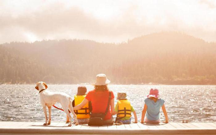 100 cose strane da fare in estate
