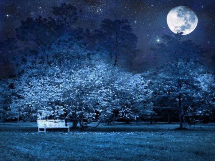 Fet stava splendendo la luna della notte