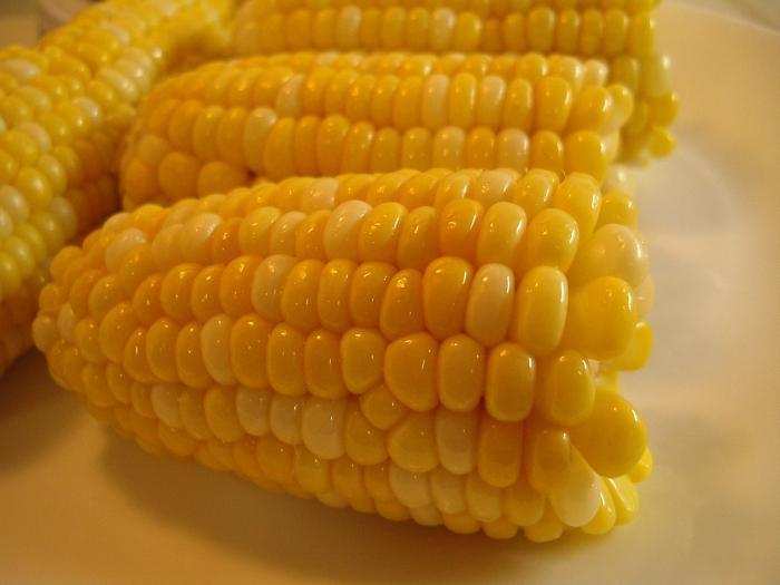 jak gotować kukurydzę w wolnej kuchence