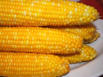 gotować kukurydzę w garnek Panasonic