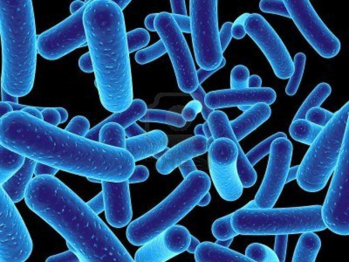микробна својства