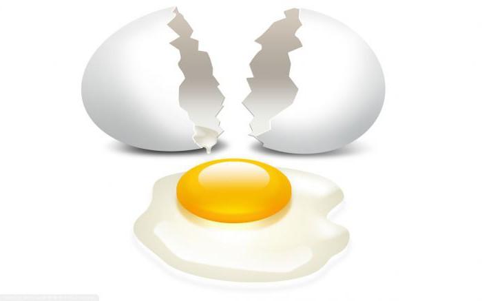 Колико грама протеина у јајету