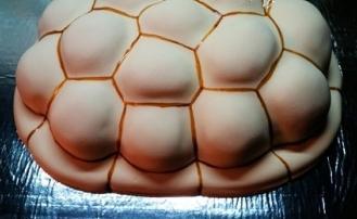 tortoise z skondensowanym mlekiem