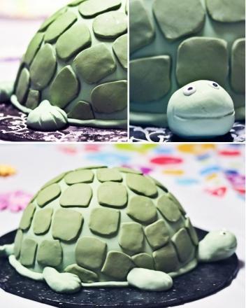 jak ugotować tortoise