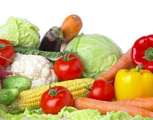 dieta di fronte all'ecografia dell'addome