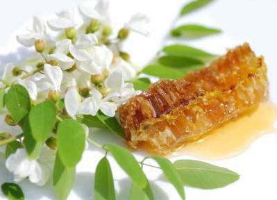 proprietà utili del miele di acacia e possibilità di applicazione