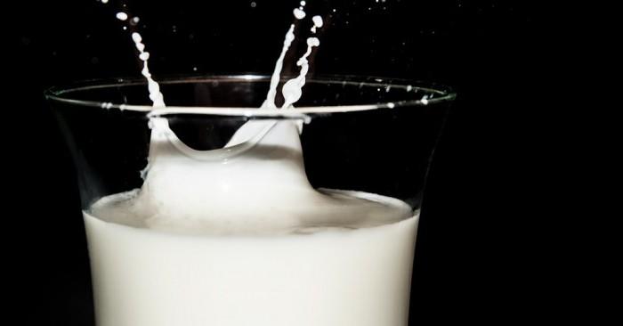 acidophilus milk