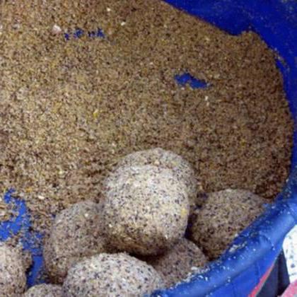 Fishhungry гладен риба ревюта