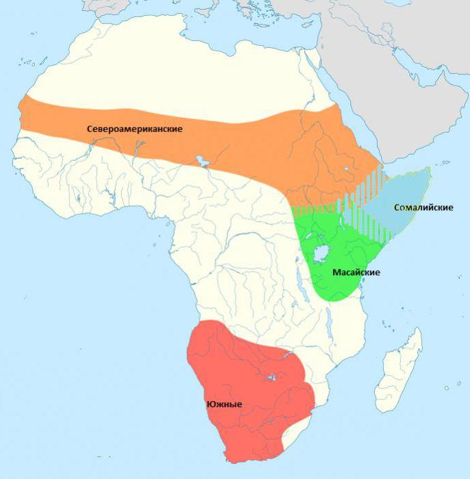 Afrički goli pic