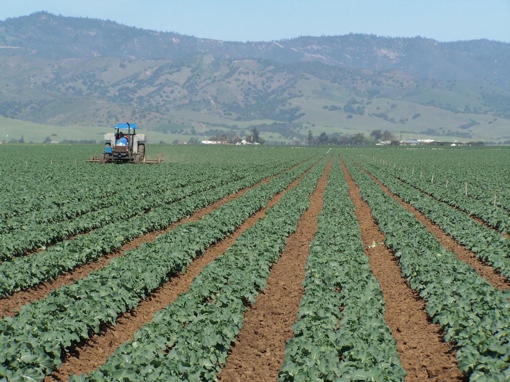appezzamento di terreno agricolo