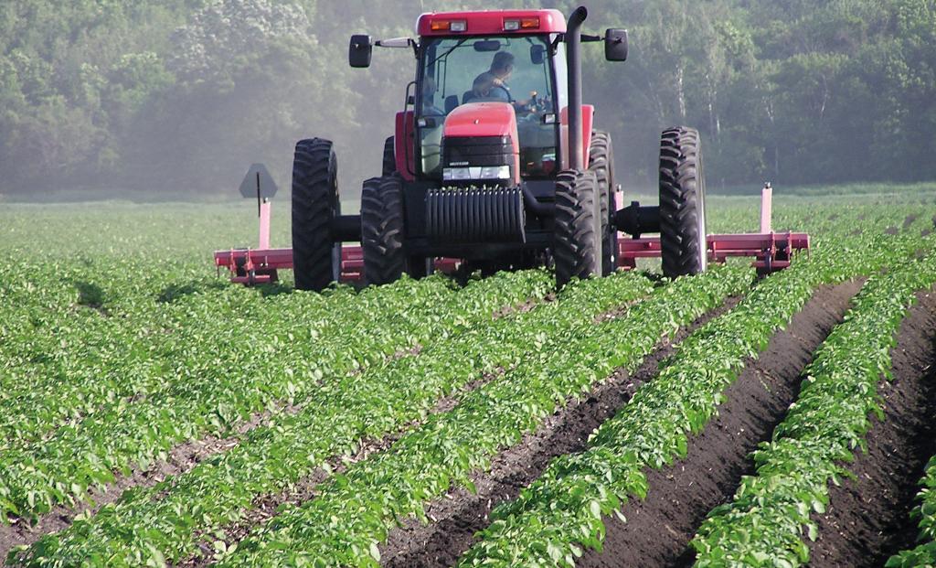 uso consentito di terreni agricoli