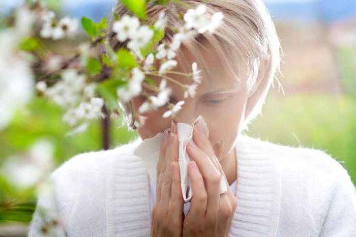 Алерзин испушта инструкције