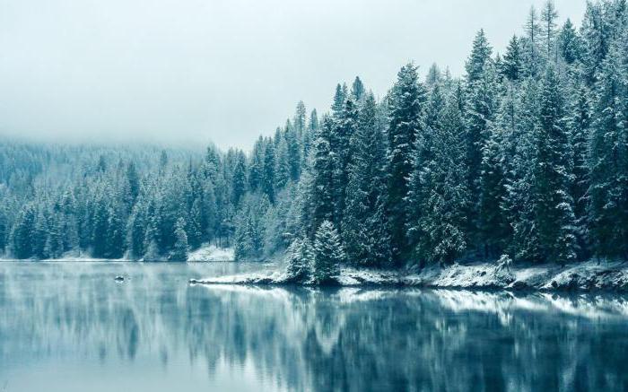 analisi del mattino invernale