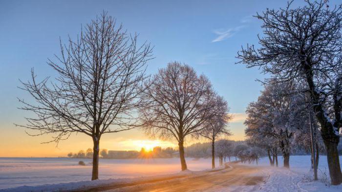 antitesi nella mattina invernale di Puskin