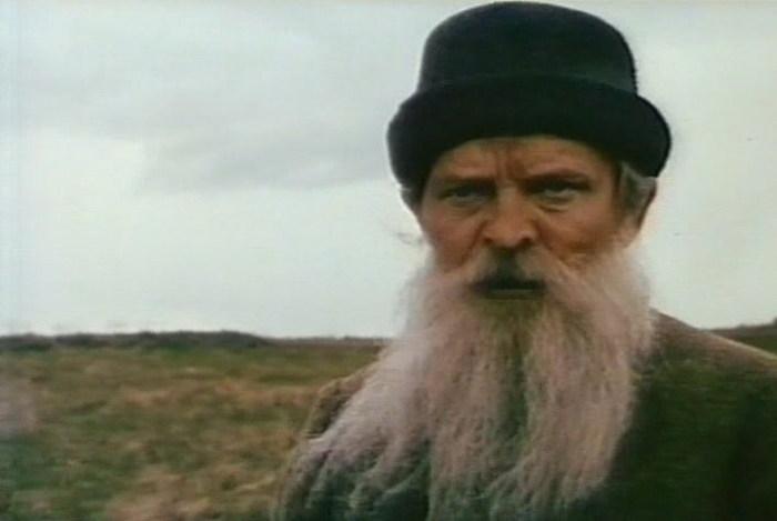 Alexander Susnin v filmu
