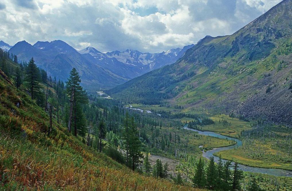 Priroda Altaja