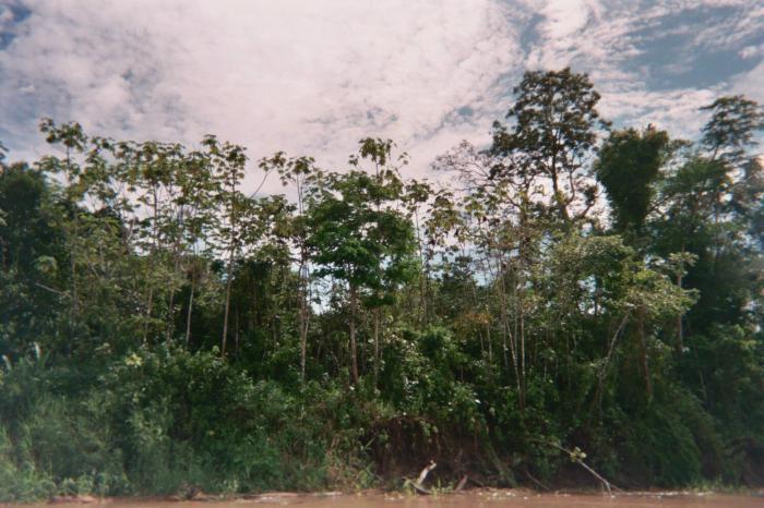 Амазон Ривер