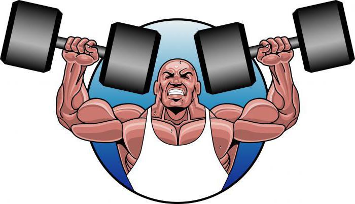 libro di anatomia degli esercizi di forza