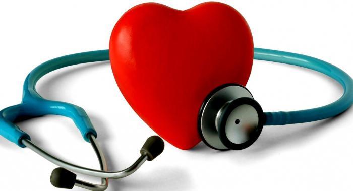 Anatomia del cuore e dei vasi sanguigni.