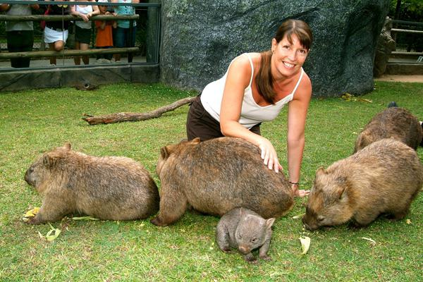 животни в Австралия