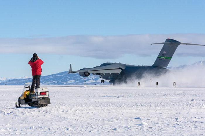 Clima antartico e fauna selvatica