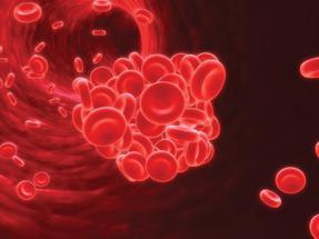vaskularni endotelij