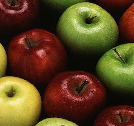 malattie della mela