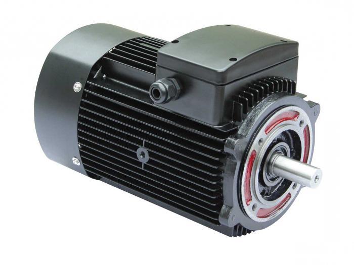 motore elettrico asincrono