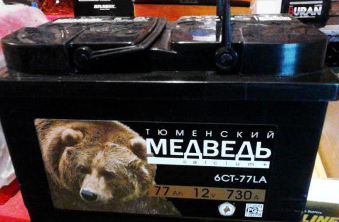 orso della batteria
