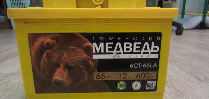 batteria orso d'argento