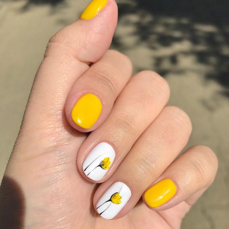 žuti tulipani