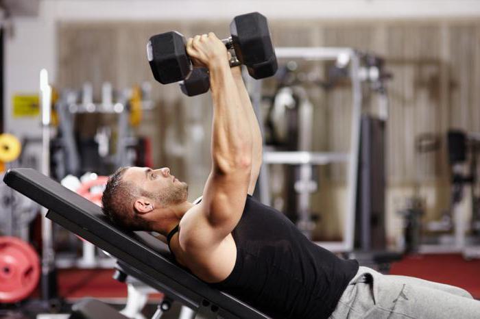 bergolak bodybuilding recenze