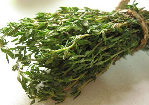Proprietà curative dell'erba di Bogorodskaya
