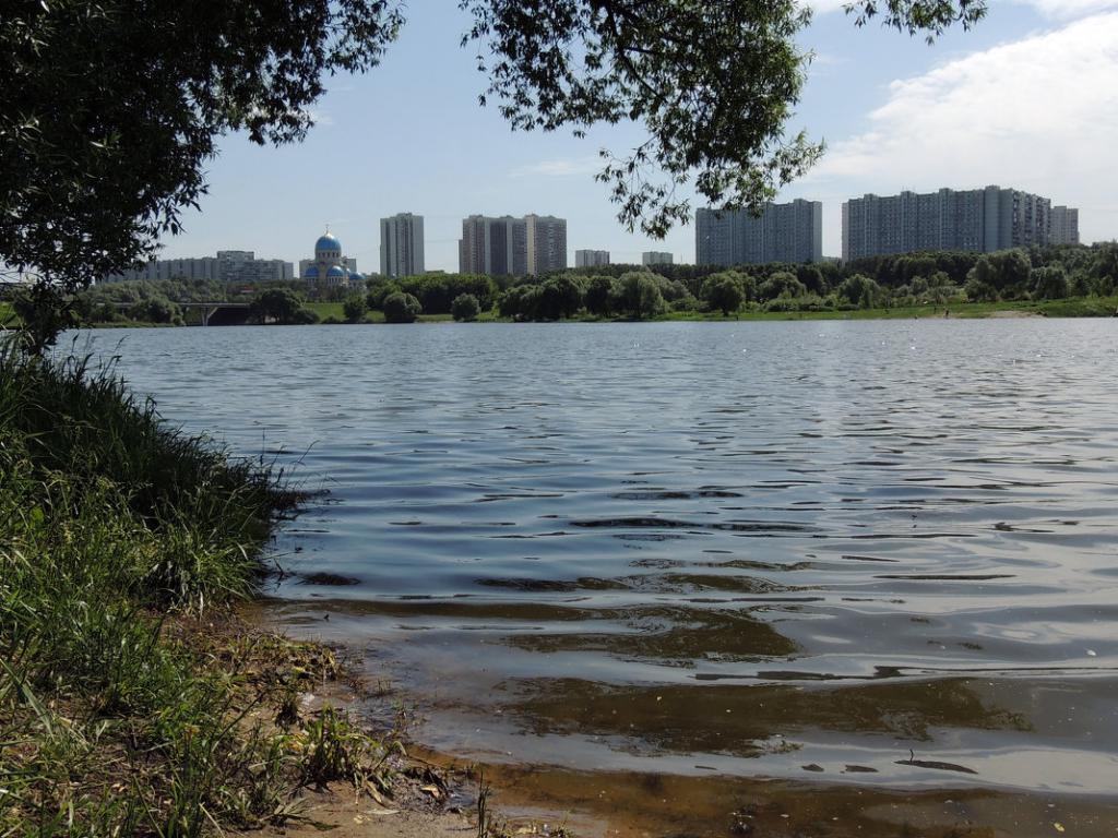 Borisov ribniki v Moskvi