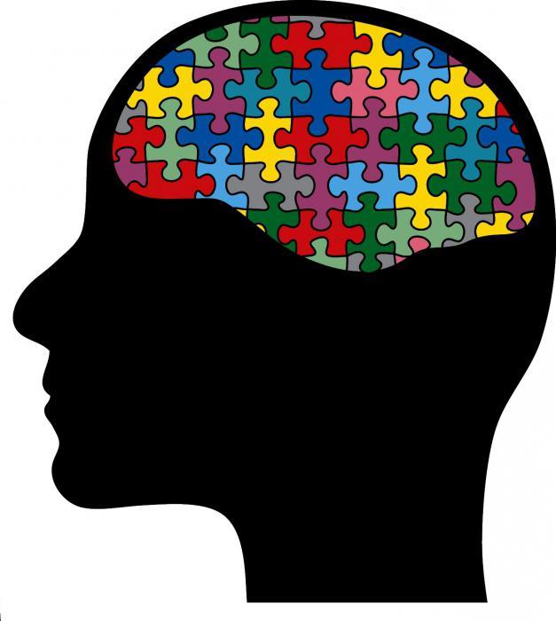 делове мозга