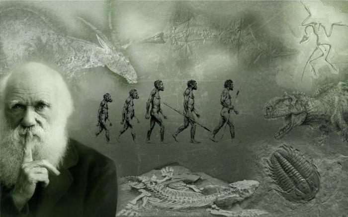 le basi della teoria di Darwin