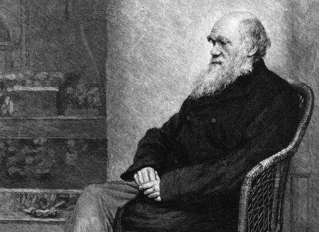 Gli insegnamenti di Darwin