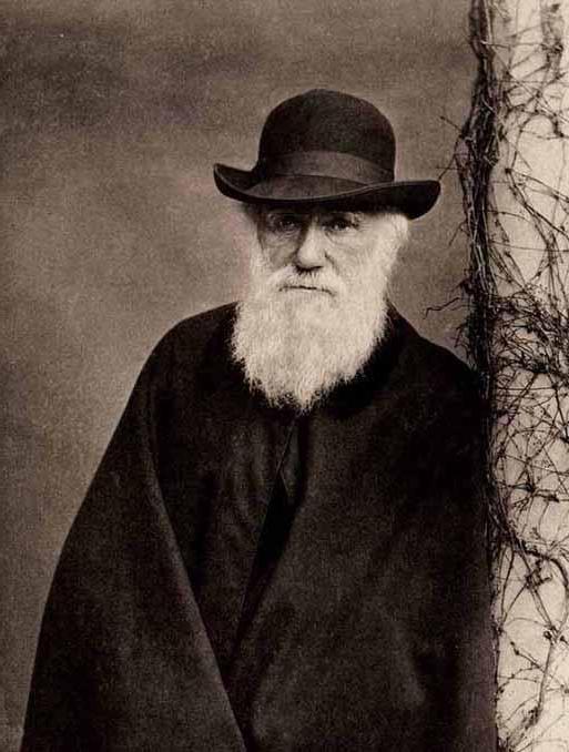 Accademia britannica Darwin