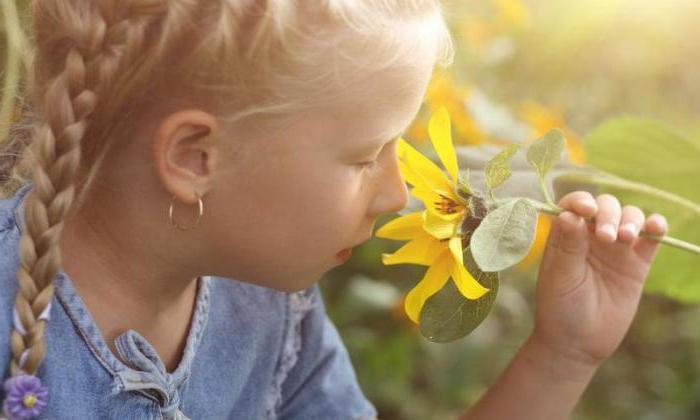 prevenzione primaria di asma bronchiale