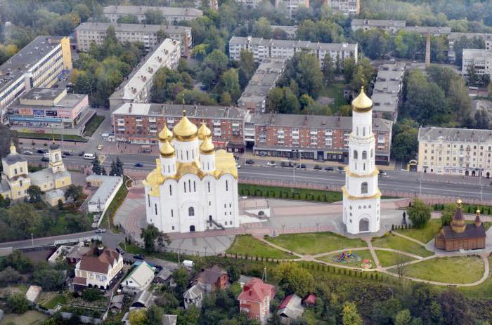 popolazione delle aree di Bryansk
