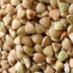porridge di grano saraceno di grano saraceno