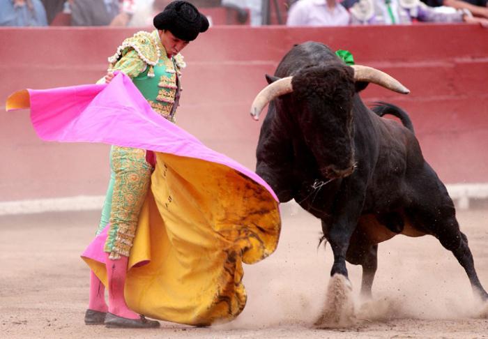prezzo della corrida