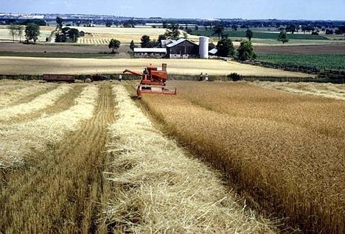 agricoltura canada