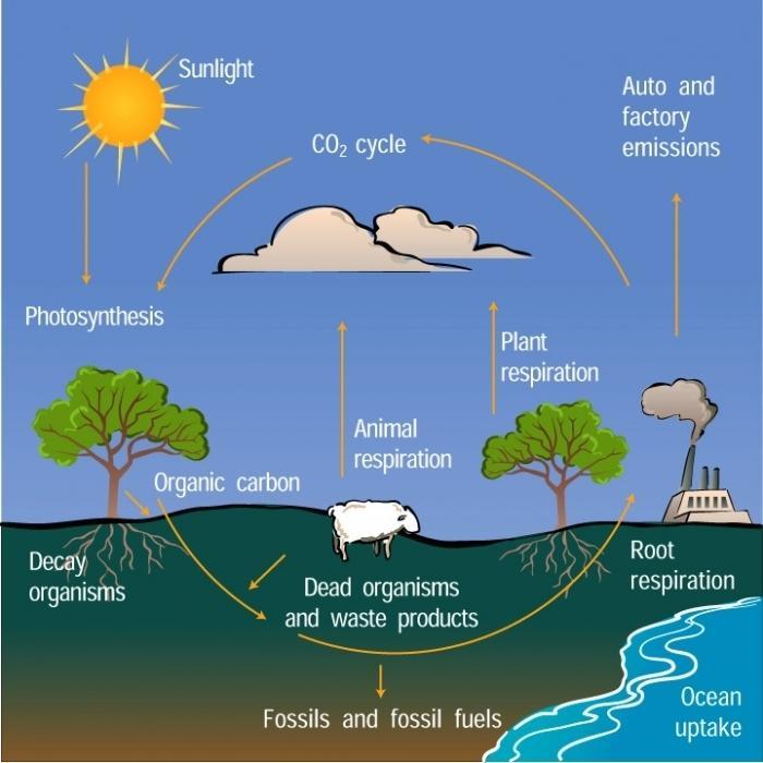 ugljični dioksid