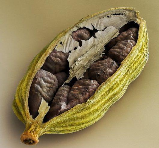кардамон ползи за лечение и укрепване