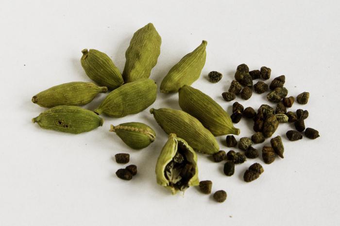 полезни свойства и използване на кардамон