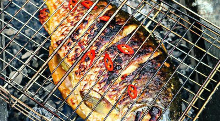 riblji šaran kuhanje recepti