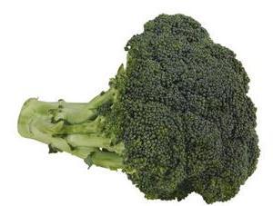 uprawa kapusty broccoli