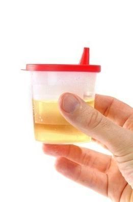 протеин в урината на детето
